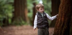 GM_Redwoods_FAMILY-20 (boy touching tree)