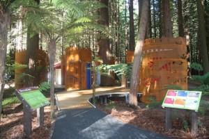 Redwoods Shroud Art - Toilets