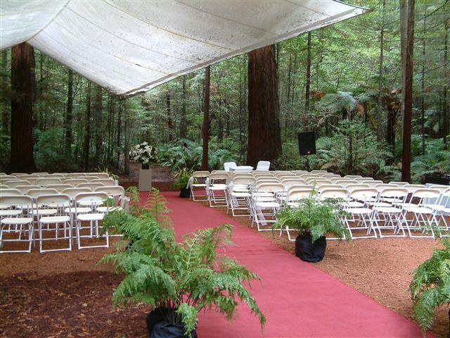 Redwoods Favourite Wedding Venue The Whakarewarewa Forest Rotorua New Zealand