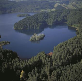 Rotokakahi compressed Aerial