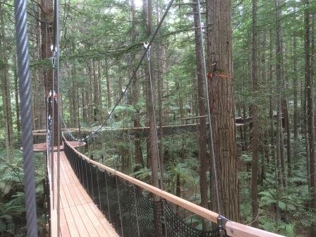 Redwoods Treewalk Rotorua The Redwoods Whakarewarewa